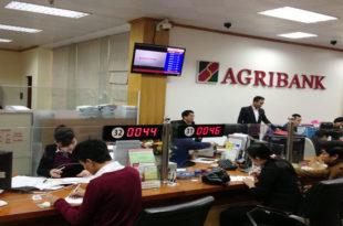 Số tổng đài hỗ trợ khách hàng Agribank